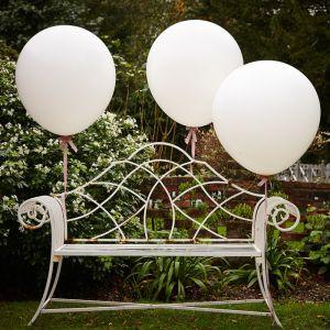 Mega ballonnen (3st) Ginger Ray