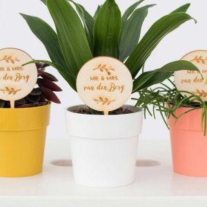 Plantenprikker takjes Mr & Mrs met achternaam