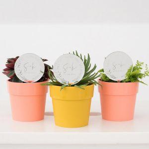 Plantenprikker met takje, initialen en quote