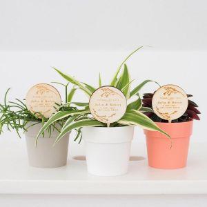 Plantenprikker romantisch met namen en quote