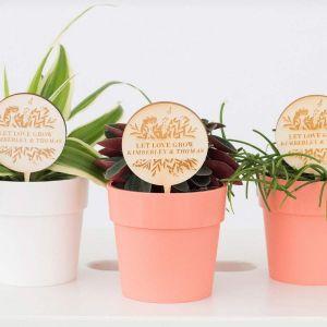 Plantenprikker botanisch met namen