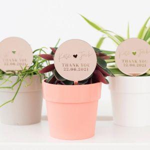 Plantenprikker modern met namen
