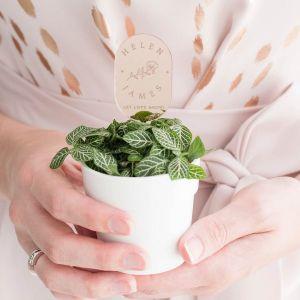 Plantenprikker roos met namen