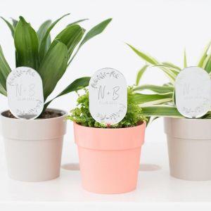Plantenprikker met takjes en initialen