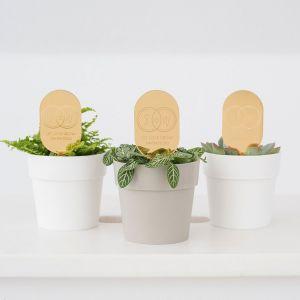 Plantenprikker met ringen en initialen