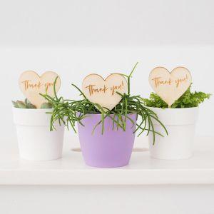 Plantenprikker hartje standaard (20 stuks)